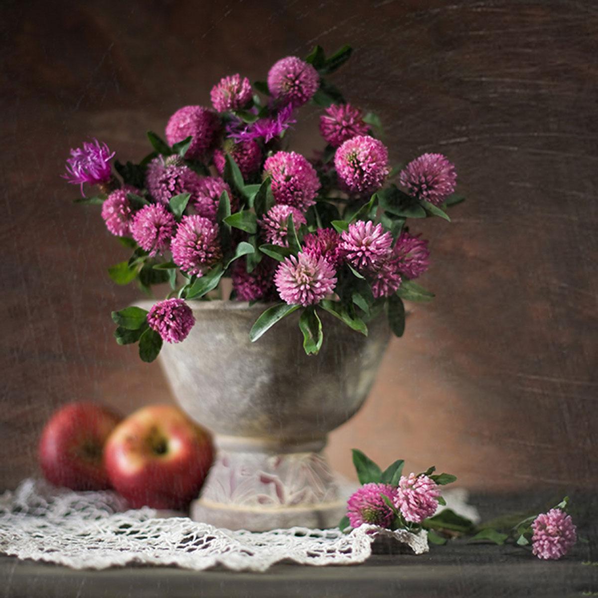 عکس گل نرگس در گلدان